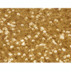 Toronto Gold Sequin 10x10 Feet Backdrop Rental